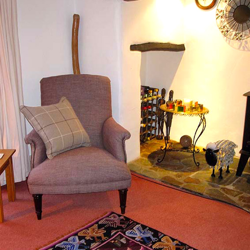 ww/assets/images/has/customer images/2 Haslemere Chair in Barra Finn